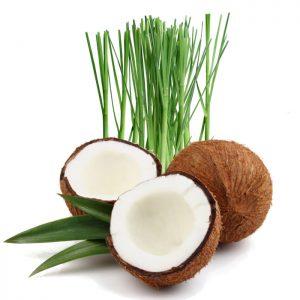Coconut Lemongrass Fragrance Refill