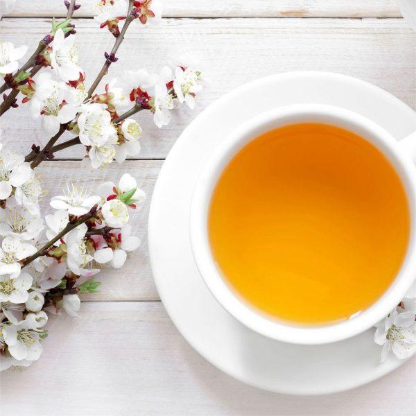 White Tea Fragrance Refill