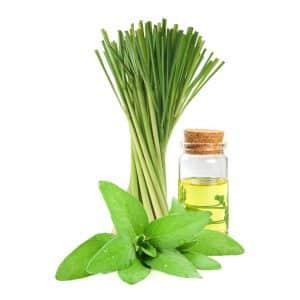 Lemongrass Sage Home Fragrance
