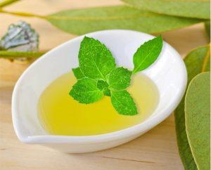 Home Eucalyptus Mint Fragrance