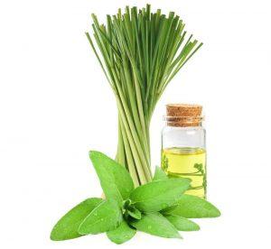 Lemongrass Sage Home Freshener